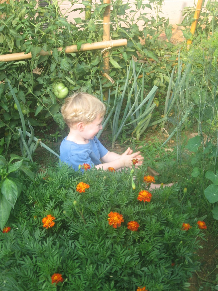 my son enjoying the garden in the blissful days of his youth